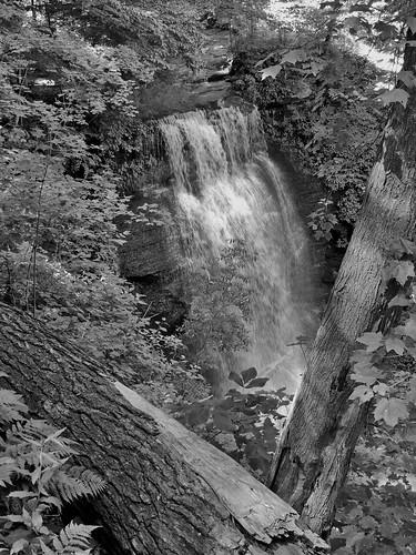 blackwhite blackandwhite bw buttermilk falls indiana county pa pennsylvania scenic scenery landscapes outside georgeneat patriotportraits neatroadtrips waterfalls nature