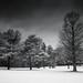 Gloomy Saturday by Eric Tischler