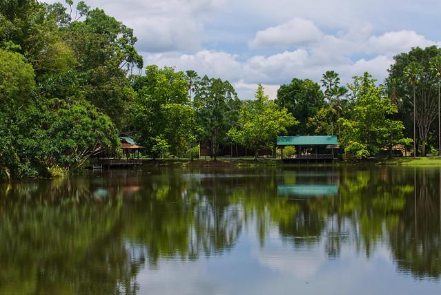 Sepilok, Sabah, Borneo, Malaysia