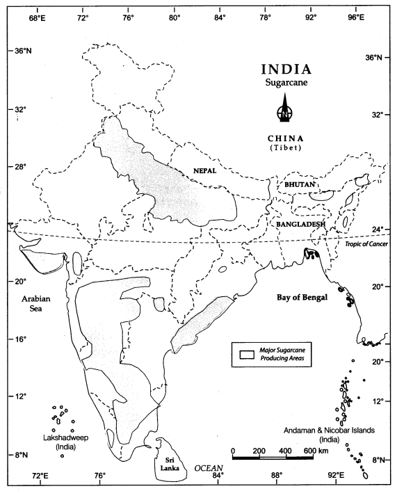 Class 10 Geography Map Work Chapter 4 Agriculture 3