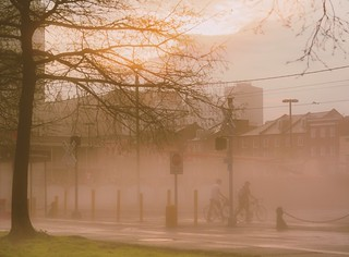 Foggy afternoon in New Orleans
