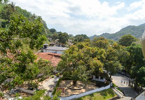 srilanka kandy southasia landscape sunny trees clouds