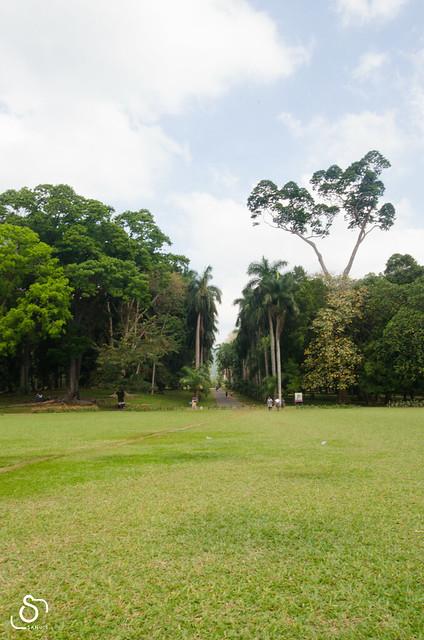Srilanka_0148