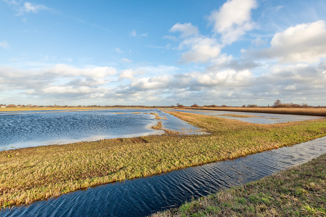 Dutch polder landscape in winter