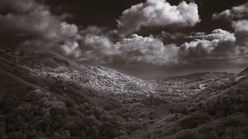 lucasvalley clouds sunshine trees hills landscape infrared blackandwhite marincounty california