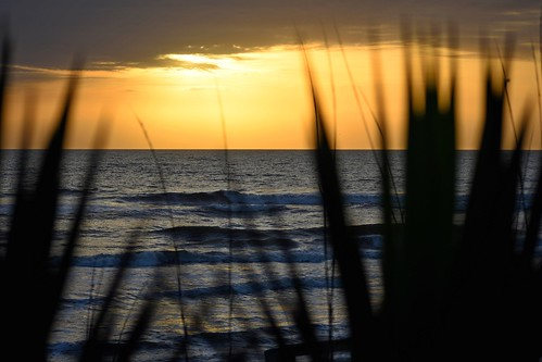 sunrise star sun sky clouds florida ncmountainman nikon d3400 phixe lowresolutionversion palmtrees ocean atlantic water waves beach flaglerbeach