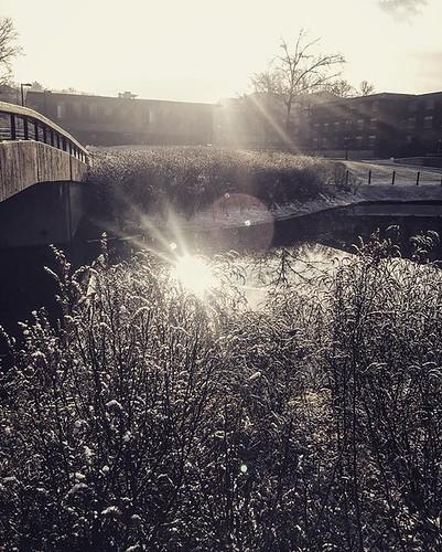 Just a touch of morning snow. #npsocial #newpaltz #sunynewpaltz #beautiful64