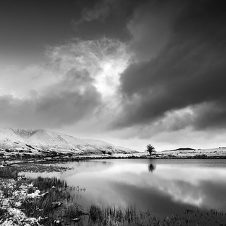 Tewet tarn cold morning mono 2 | by Alf Branch