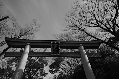 24-02-2019 Hiraoka-Jinjya Shrine, Higashi-Osaka (1)