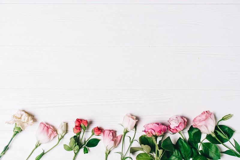 Обои фон, розы, Цветы, бутоны картинки на рабочий стол, раздел цветы - скачать