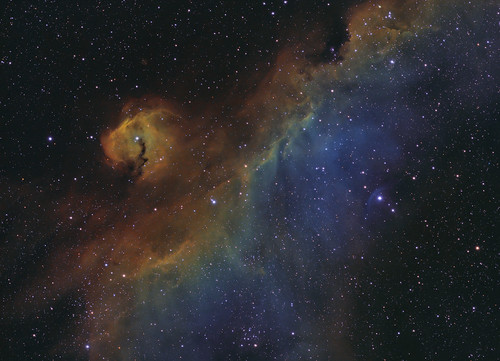 IC2177; The Parrot or Seagull Nebula | by nicocarver