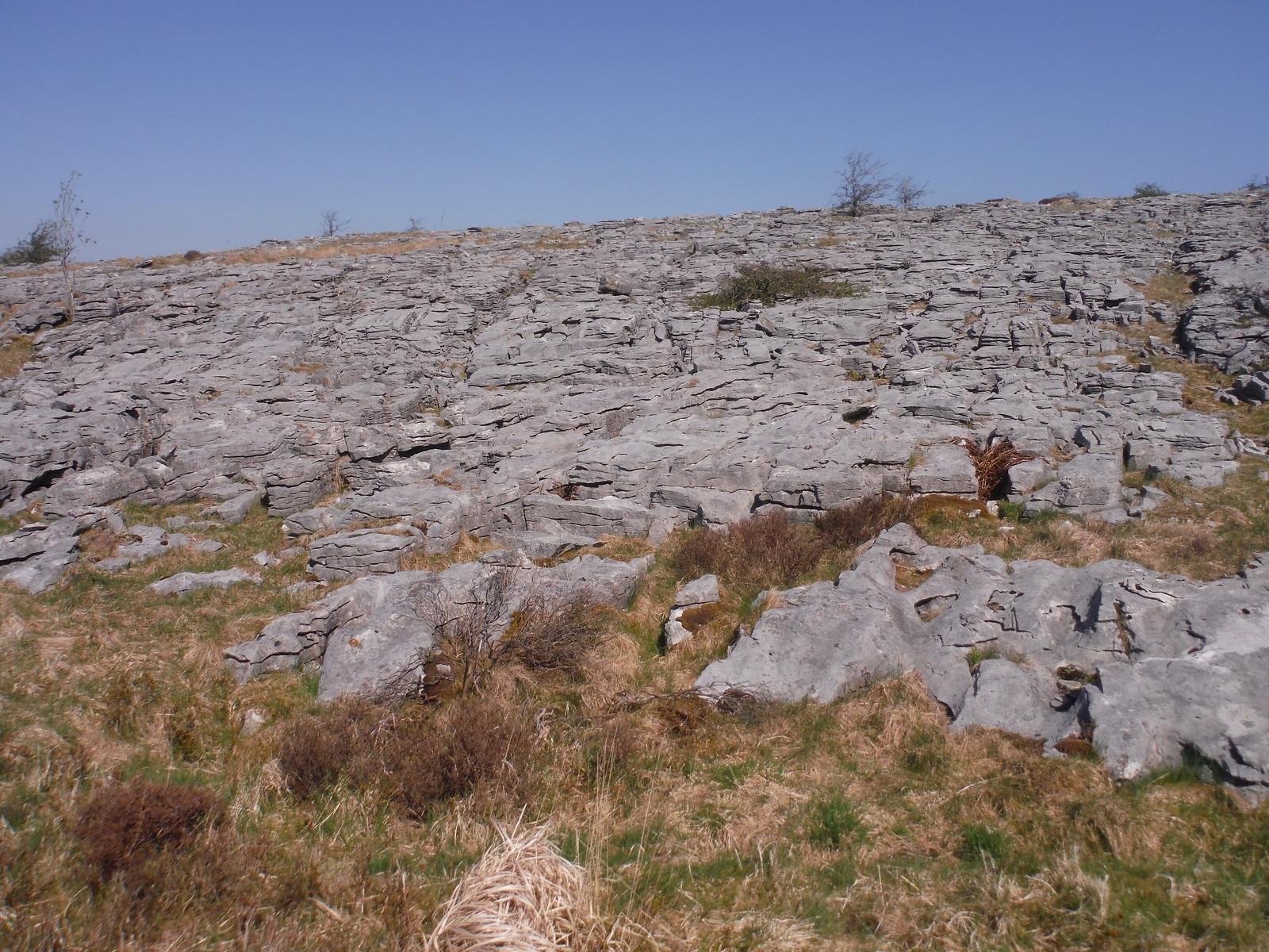 Limestone Pavement SWC Walk 307 - Fforest Fawr Traverse (Craig y Nos to Llwyn-y-celyn) [Beacons Way Route]