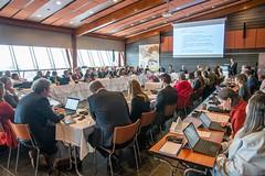 SAOFI204_2019_RUKA_Plenary-2