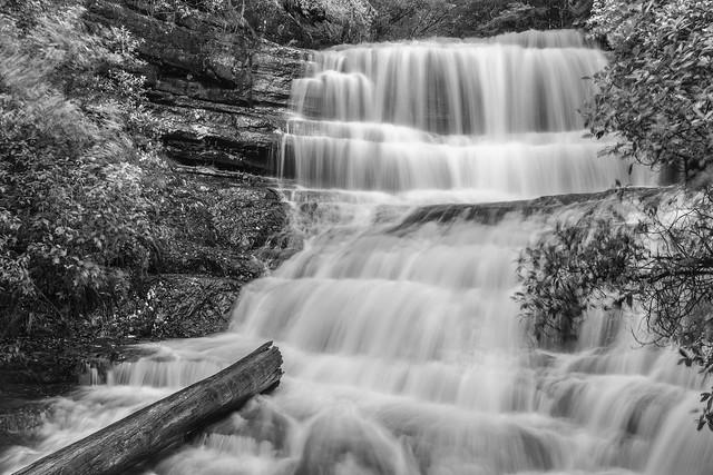 Russel Falls . Tasmania