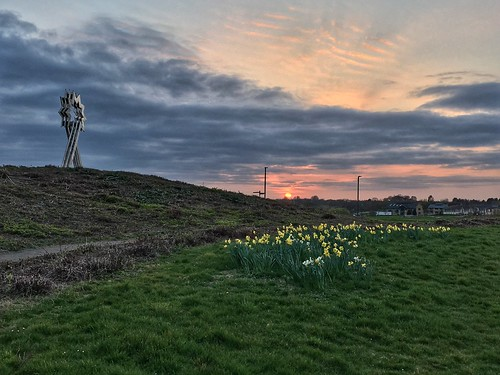 apple iphone se furzton milton keynes buckinghamshire sunset daffodils triple head sculpture star clouds evening