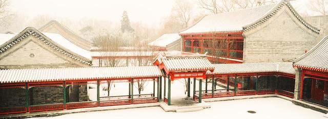 朗润园之冬(Winter of the Langrun Garden, Peking University)