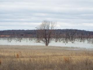 Lake Ray Roberts, Jordan Unit, near Pilot Point, Texas, Denton County, Texas