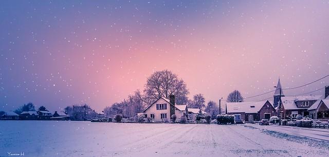 Winter - 6433