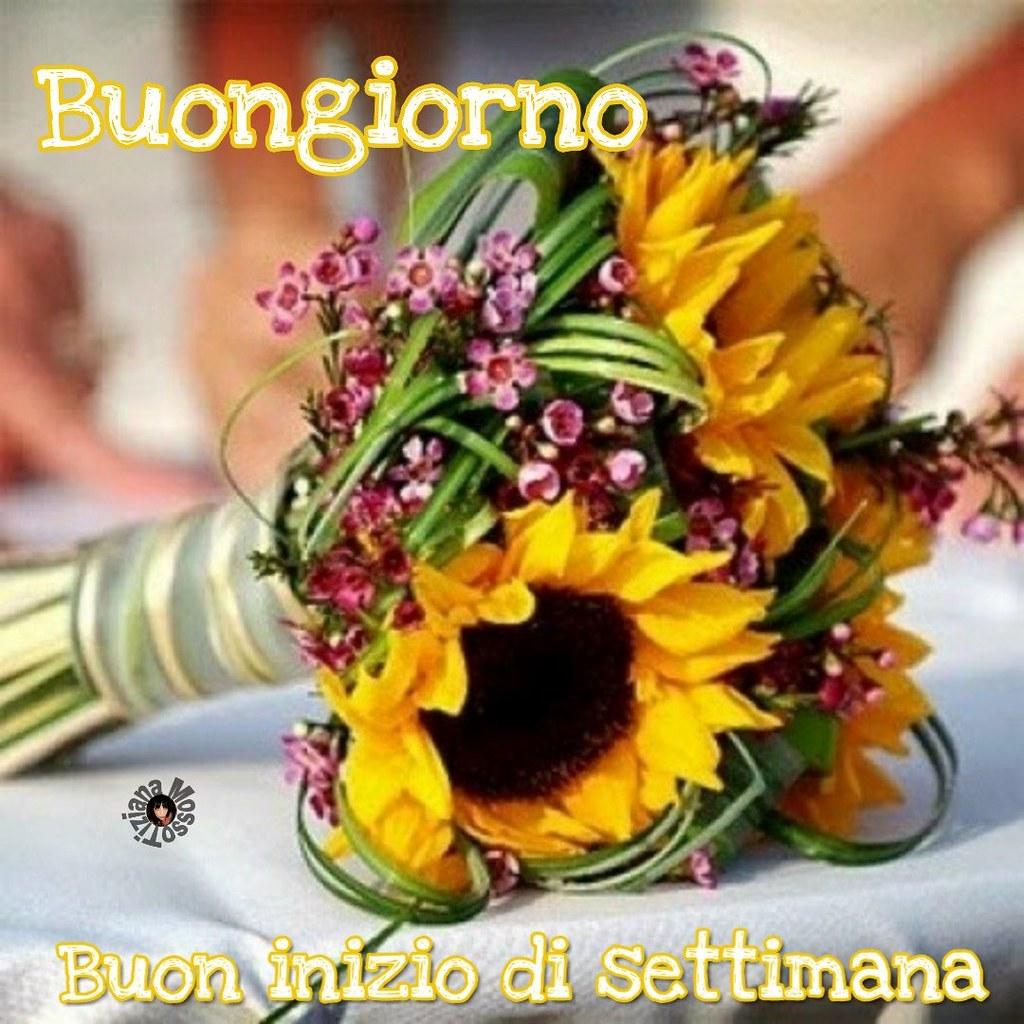 Link Buongiorno Buon Inizio Di Settimana Flowers Y