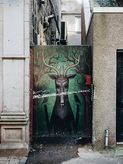 Aberdeen - painted doors | by Macaroons
