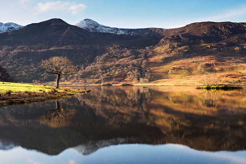 Crummock water morning reflection | by Alf Branch