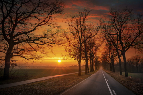 Sonnenallee | by Christian Heller Art Photography