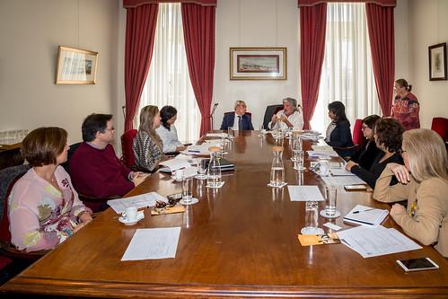 19.03. VII Reunião Comissão Temática de Educação, Ensino Superior, Ciência e Tecnologia dos Observadores Consultivos da CPLP