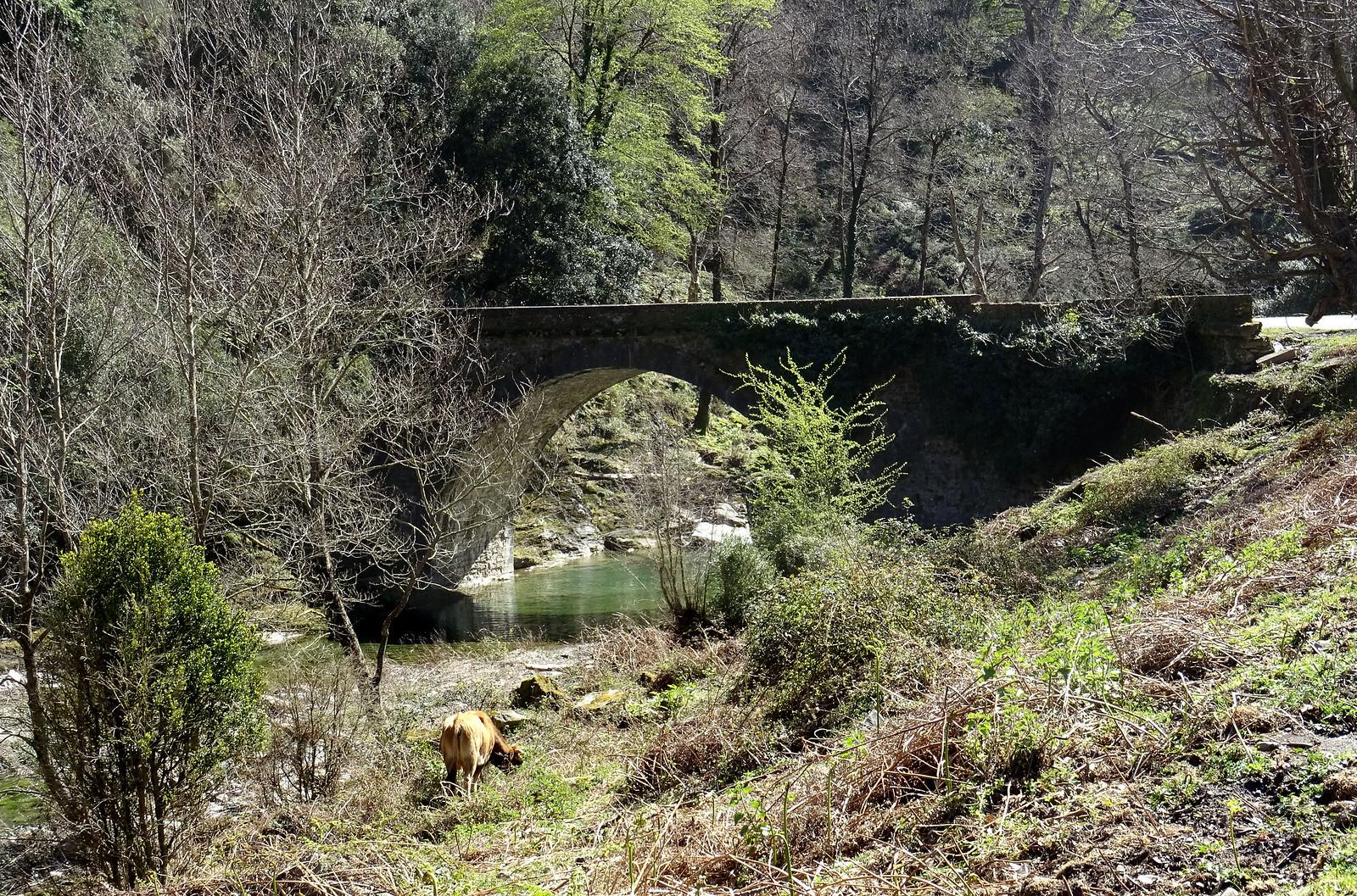 Pont de l'Enfer (Castagniccia)
