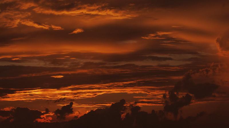 Amazon sunset Ascanio_Amazon Cruise 199A7650