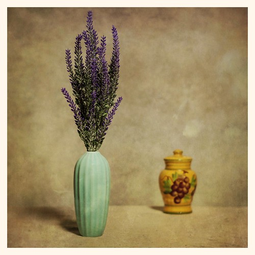 Still Life with Vase and Lavender | by DayBreak.Images