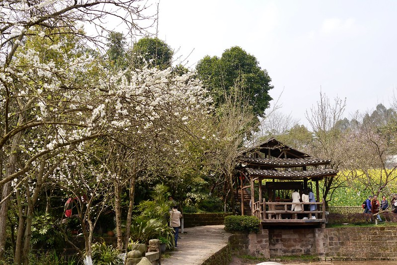 四川美术学院  重庆