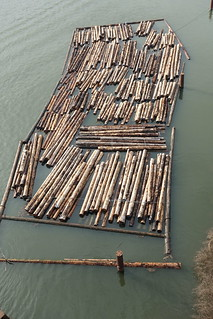 Log boom on the North Arm of the Fraser River