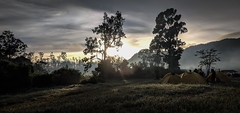 Sunrise at the camping ground