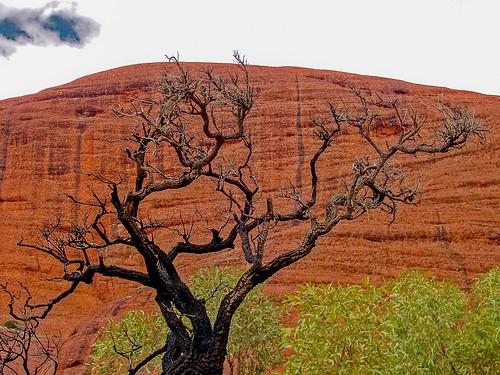 Uluru_21.jpg
