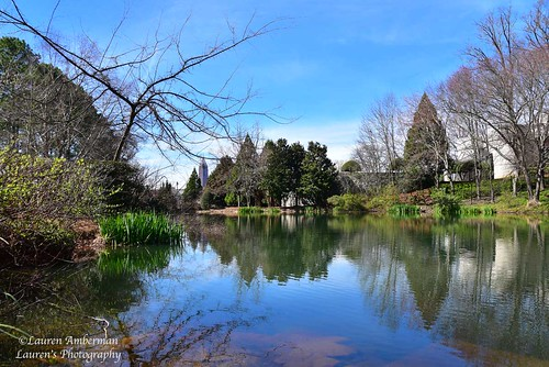 laurensphotography lauren3838photography landscape lake pond tree reflections spring atlanta georgia nikon d750 nature ilovenature sky president library cartercenter carterpresidentiallibrary jimmycarter postcard urban tourism tamron tamron2875mm28