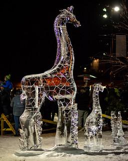 Icy Giraffe Family