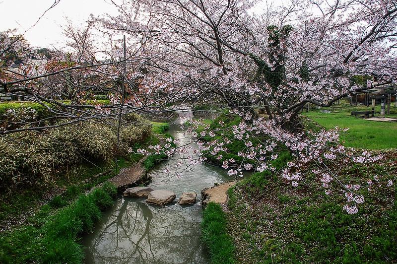 石川縣九谷燒美術館庭園 (17)