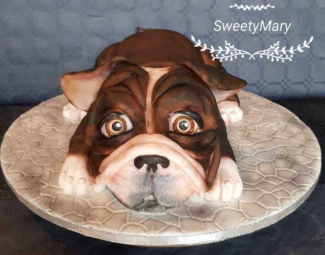 Dog Cake by Lilou Nouche of Sweety Mary
