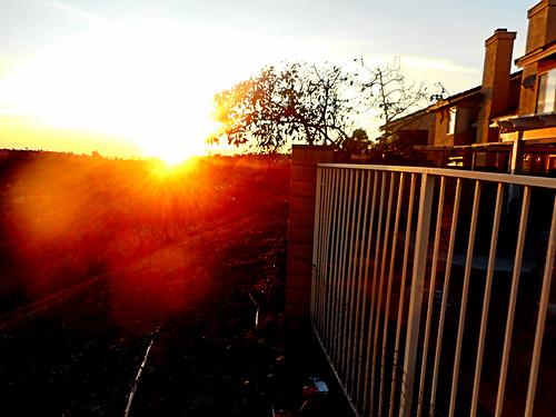 portolahills california photo digital fence winter sunset