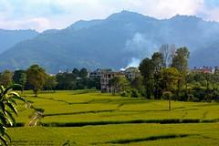 In Pokhara, Nepal2