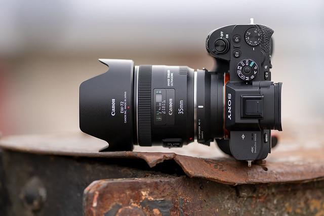 SONY ⍺7RII & Canon EF35/2 IS on Sigma MC-11 by SONY ⍺7III & Sigma FE 1.8/135 Art