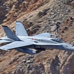 Marine Hornet