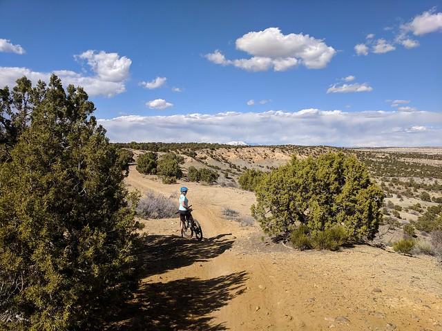 On the Kinsey Trail, near Farmington NM