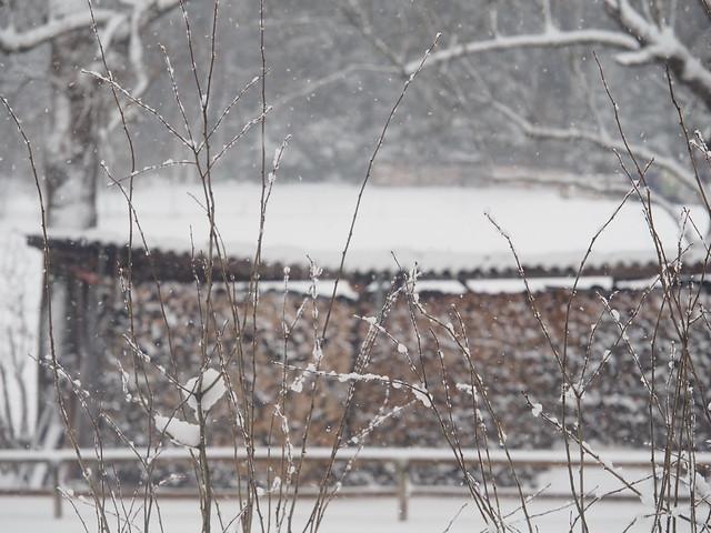 Snow Snowing Bavaria Germany © Es schneit Schnee Bayern Oberbayern ©