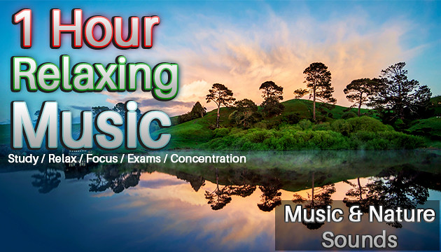 Relaxing & Study Piano Music and Nature Sounds | Focus, Final Exams, Concentration
