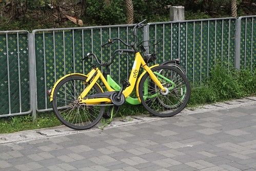 Ofo and Gobee bikes parked on the street