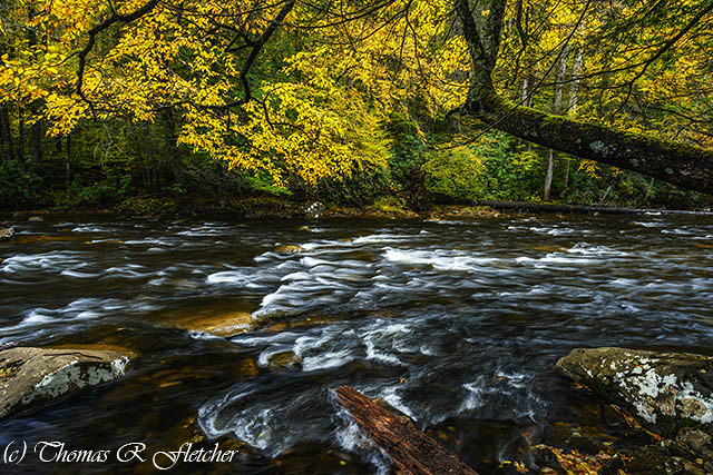 Autumn Day on Cranberry River