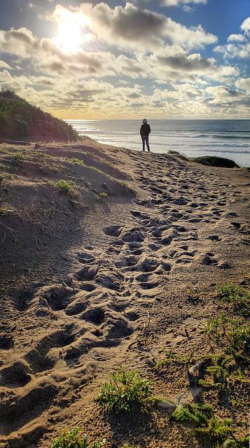 Sunset at Morro Dunes Natural Preserve