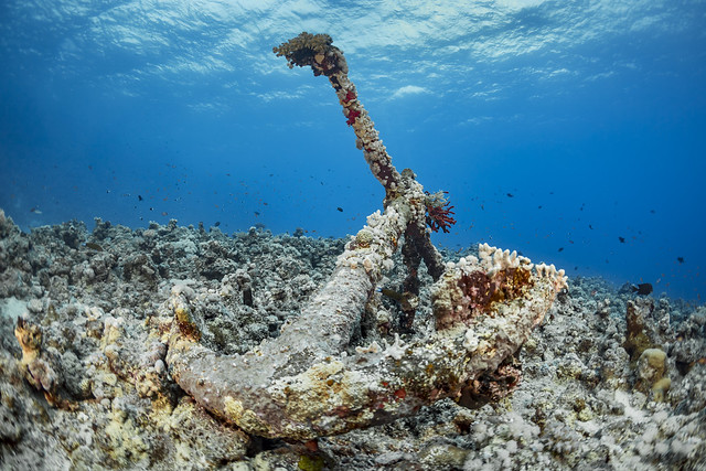 Reef and Wreck