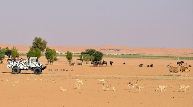 5059 Nofa Wildlife Safari Park and Resort in Riyadh 02